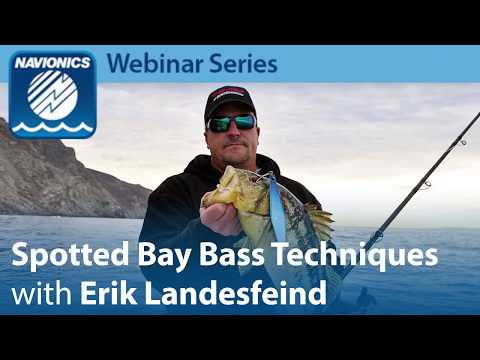 Webinar: Spotted Bay Bass Techniques