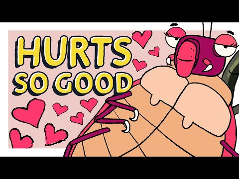 The Terrible Truth About Bed Bug Sex