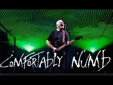 "David Gilmour "" Comfortably Numb "" Royale Albert Hall 2006"