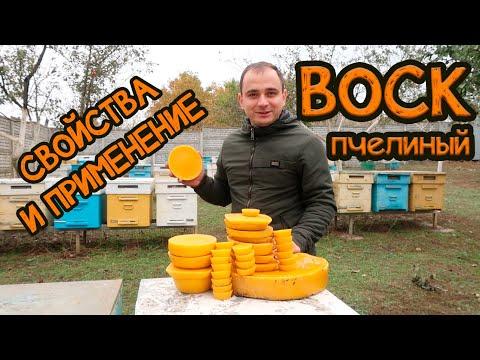 Воск пчелиный польза и противопоказания