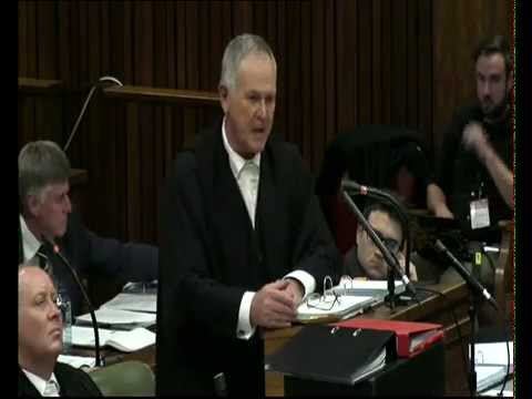 Oscar Pistorius Trial: Friday: 08 August 2014, Session 2