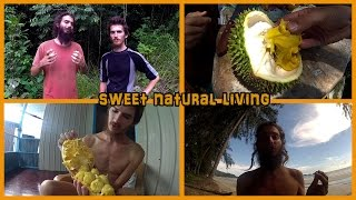 WELCOME TO OUR CHANNEL: SWEET NATURAL LIVING TRAILER