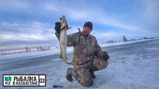 ЭТА ЩУКА СДЕЛАЛА НАШУ РЫБАЛКУ КРАЙНИЙ ЛЕД Рыбалка в Казахстане 2020