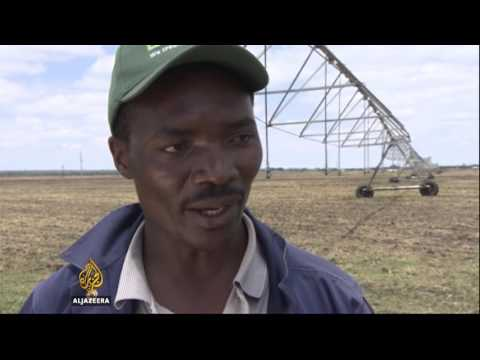 🇨🇳 🇿🇲 China invests millions in Zambia's farming sector | Al Jazeera English