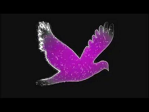 Stephan Remmler ~ Vogel Der Nacht
