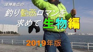 釣り動画ロマンを求めて「生物編」2019年度版