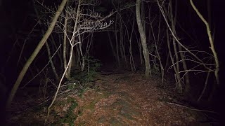 【4K】Walking at night in Aokigahara forest (no pranks, not scary)