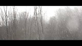 Записки Алтарника - Христова невеста