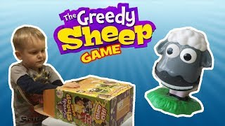 Greedy Sheep Game Spielzeugtester - Julian