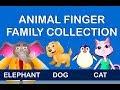 Animal Finger Family Collection - 8 Animal Finger Families Medley