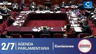 Sesión Comisión de Constitución 2/7 (09/07/19)