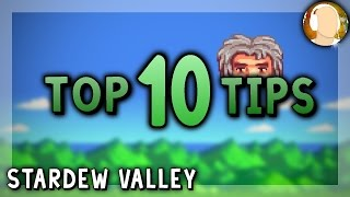 10 Tips to Get Started | Stardew Valley - Stardew Valley Tips and Tricks