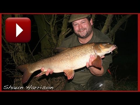 BARBEL FISHING - FREE SPIRIT River Barbel