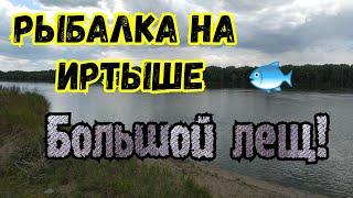 Рыбалка на Иртыше Большой лещ! июль 2019