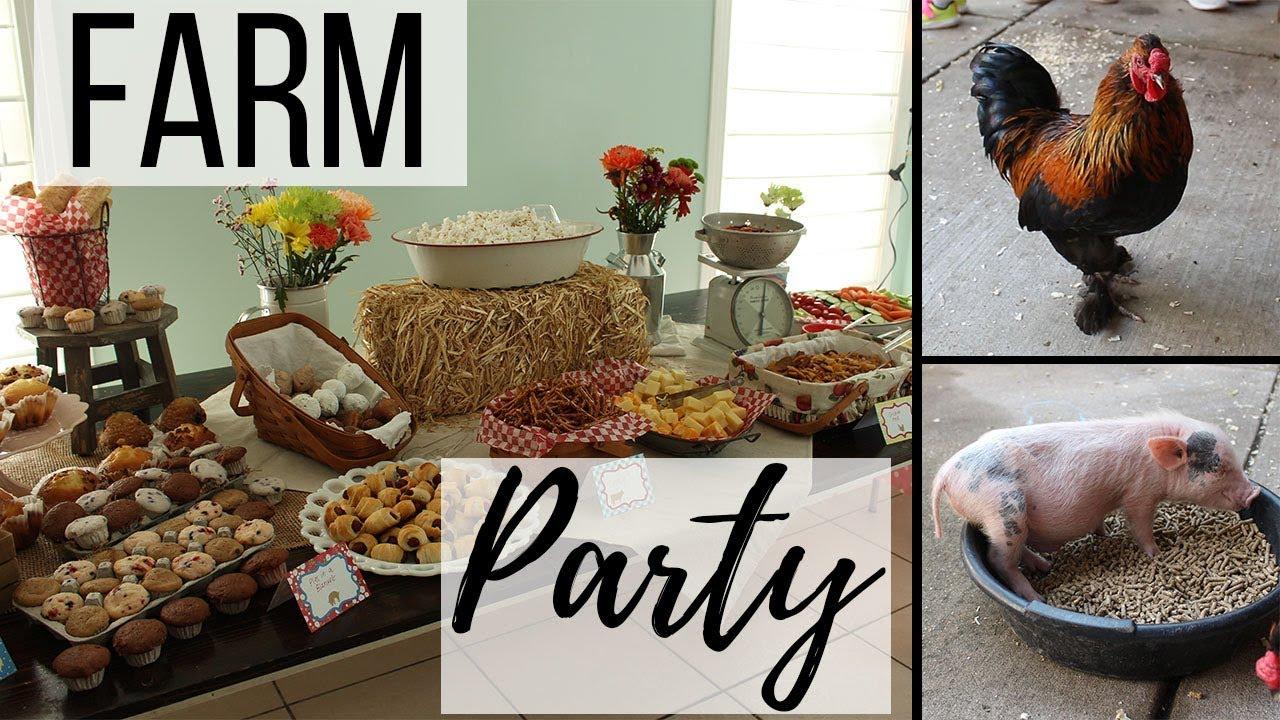 Farm Birthday Party Decorations