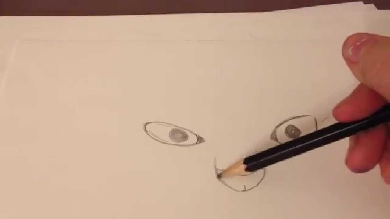 puma zeichnen