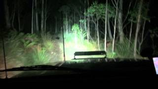 MORE INFO: http://www.drifta.com.au/arb-led-intensity-night-drive/ ...