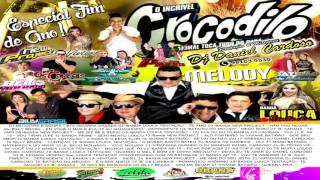 ♬ CD CROCODILO MELODY 2016 VOL 14 ♬