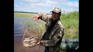 г Северодвинск 2015 рыбалка на Белом озере..