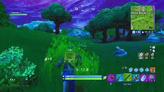 Fortnite Première match in solo with the blue hybrid skin