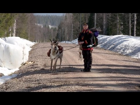The Last Generation? - Sami Reindeer Herders in Swedish Lapland, Documentary