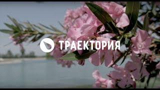 Сергей Тараканов. Траектория Вейк.