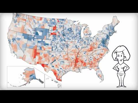 An Illustrated Guide to Income in the United States: Book Trailer Video