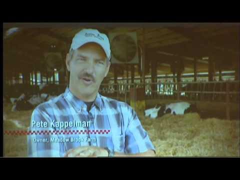 Meadow Brook Dairy Farms, LLC.