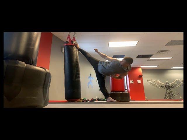 Alex Lee System Martial Arts Training System  Kicks