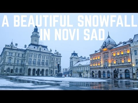 Novi Sad: A Beautiful Snowfall