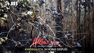 #ARDEGALICIA, 24 HORAS DESPUÉS