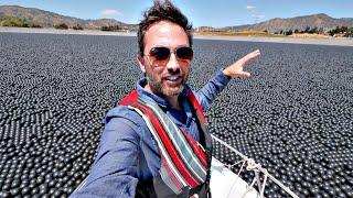 Зачем в водохранилище 96 000 000 шариков? [Veritasium]