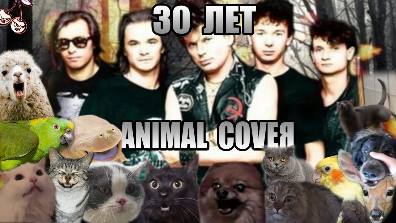 Сектор Газа - 30 лет (Animal Cover)