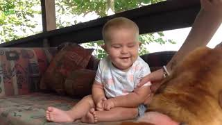 Cute Babies Laughing at Dogs video Compilation