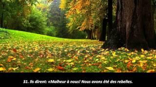 #68-Anas Al Emadi _Sourate Al Qualam : Magnifique récitation