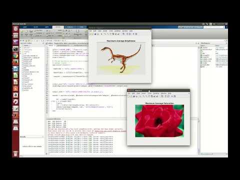 Big Image Data Processing