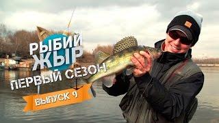 Рыбалка с Денисом Вихровым на МР- Рыбий Жыр 9