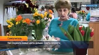 Как сохранить цветы. Советы флориста(, 2012-03-07T09:18:02.000Z)