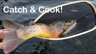 Catch And Cook Tiger Trout On The Coffey Spit & Filleted to Grill On The Firebox Camping Stove