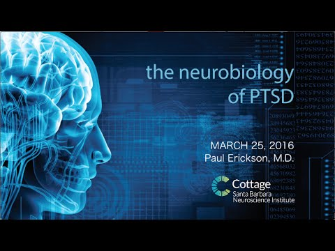 SBNI Lunch Lecture Series - The Neurobiology of PTSD