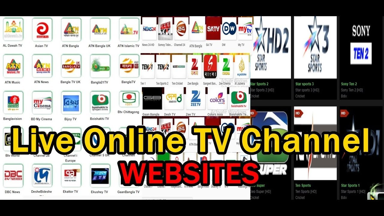 Forex tv live streaming