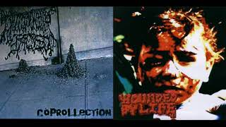 I Shit On Your Face / Wounded By Life – Coprollection / Untitled (FULL SPLIT 2007)