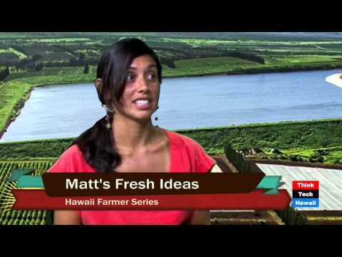 Matt's Oahu Fresh Ideas