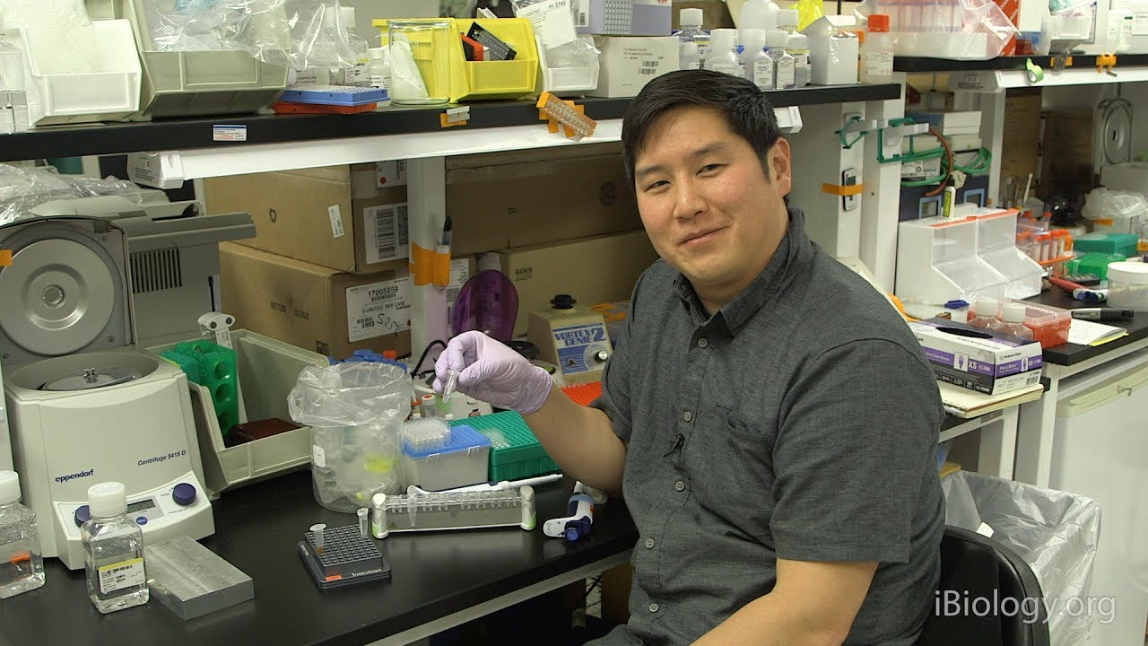 Next Generation Sequencing 2: Purifying DNA Samples with Magnetic Beads -  Eric Chow (UCSF)