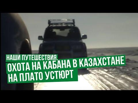 Наши путешествия. Охота на кабана в Казахстане на плато Устюрт