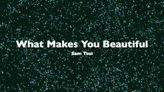Sam Tsui - What Makes You Beautiful [MP3/DL]
