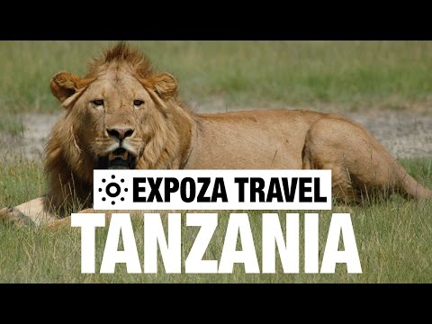 Serengeti & Ngorongoro Vacation Travel Video Guide