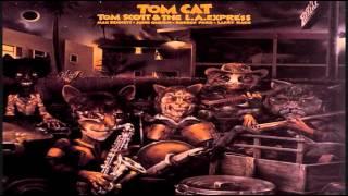 Play Tom Cat