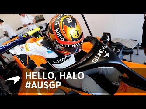 Hello, Halo   Australian GP insights