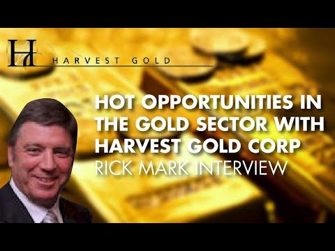 Hot Opportunities In The Gold Sector With Harvest Gold Corp - Rick Mark Interview